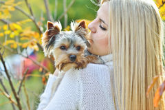 Muchacha adolescente con el pequeño perro Fotografía de archivo libre de regalías
