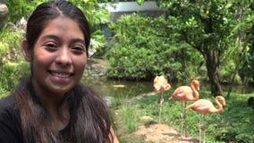 Muchacha adolescente con los flamencos durante verano almacen de video