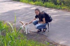 Muchacha adolescente con un gato Fotografía de archivo