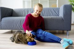 Muchacha adolescente con un gato Imagenes de archivo
