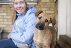 Muchacha adolescente con un perro divertido joven Foto de archivo