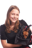 Muchacha adolescente con un perro en bolso Fotos de archivo