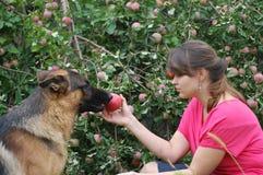 Muchacha adolescente en el jardín con el perro Fotografía de archivo libre de regalías