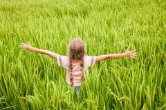 Muchacha adolescente en los arroces de arroz Imagen de archivo libre de regalías