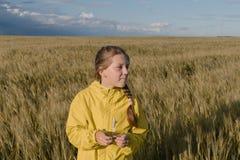 Muchacha adolescente en un campo amarillo Fotografía de archivo
