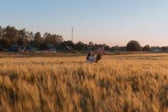 Muchacha adolescente en un campo con las flores Foto de archivo libre de regalías
