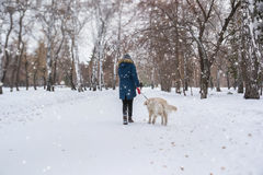 Muchacha adolescente irreconocible que camina su perro Foto de archivo libre de regalías
