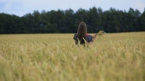 Muchacha adolescente joven hermosa con los oídos del trigo en un campo de trigo almacen de metraje de vídeo