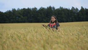 Muchacha adolescente joven hermosa con los oídos del trigo en un campo de trigo almacen de video