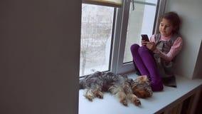 Muchacha adolescente jugando en línea el juego para el smartphone y el perro casero que se sienta en alféizar del travesaño del w Fotografía de archivo libre de regalías