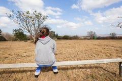 Muchacha adolescente que sienta el campo relajante Foto de archivo