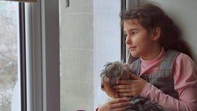 Muchacha adolescente y perro que se sienta en un alféizar del travesaño del animal doméstico de la ventana Imágenes de archivo libres de regalías