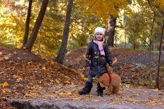 Muchacha adorable con el oso de peluche Fotografía de archivo