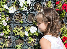 Muchacha adorable del pequeño niño en parque cerca de la cama de flor en día de verano Fotos de archivo libres de regalías
