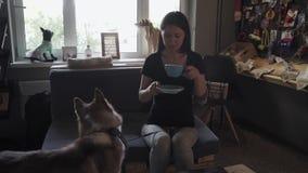 Muchacha agradable con el perro esquimal en el sofá metrajes