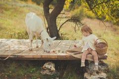 Muchacha agradable elegante vestido en suéter con el pelo rubio que pasa tiempo en pueblo con la cesta llena de manzanas que alim Fotografía de archivo