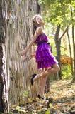 Muchacha agradable en el vestido violeta cerca de la cerca de mimbre Fotos de archivo libres de regalías
