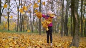 Muchacha alegre que lanza follaje del otoño para arriba al aire libre almacen de video