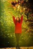 Muchacha alegre que se divierte con las hojas en parque otoñal Imagen de archivo