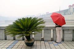 Muchacha animada con la observación del paraguas Foto de archivo