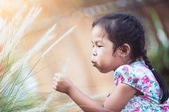Muchacha asiática linda del pequeño niño que juega con la flor de la hierba Foto de archivo libre de regalías