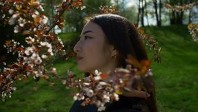 Muchacha asiática relajada en flores de cerezo florecientes almacen de video