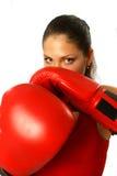 Muchacha atractiva con los guantes de boxeo Fotos de archivo