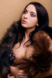 Muchacha atractiva del glamor de la lujuria con la boa Foto de archivo