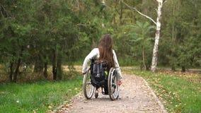 Muchacha atractiva en una silla de ruedas que camina en el parque del otoño Ocio discapacitado almacen de metraje de vídeo