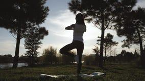 Muchacha atractiva joven que hace ejercicios, poniendo y estirando en una estera de la yoga en parque Concepto activo sano almacen de metraje de vídeo