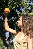 Muchacha bajo un árbol anaranjado Fotografía de archivo