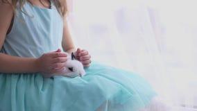 Muchacha bastante adolescente que se divierte, abrazando y jugando con el conejo decorativo almacen de metraje de vídeo