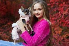 Muchacha bastante rubia con la chihuahua en la naturaleza Imagenes de archivo