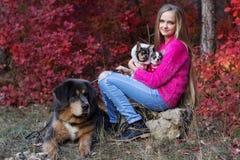 Muchacha bonita con dos perros de la chihuahua en la naturaleza Foto de archivo libre de regalías
