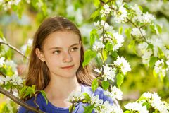 Muchacha bonita del adolescente con las flores blancas de la pera Imagen de archivo