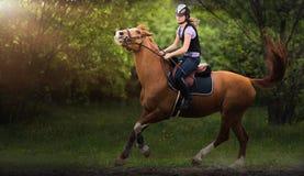 Muchacha bonita joven que monta un caballo Foto de archivo