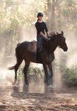 Muchacha bonita joven que monta un caballo con las hojas retroiluminadas detrás Imagen de archivo