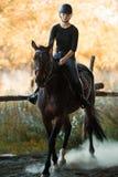 Muchacha bonita joven que monta un caballo con las hojas retroiluminadas detrás Fotografía de archivo libre de regalías