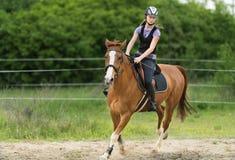 Muchacha bonita joven que monta un caballo con las hojas retroiluminadas detrás en s Fotografía de archivo libre de regalías