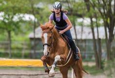 Muchacha bonita joven que monta un caballo - saltando sobre obstáculo con el CCB Fotos de archivo