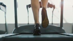 Muchacha bonita que activa en gimnasio almacen de metraje de vídeo