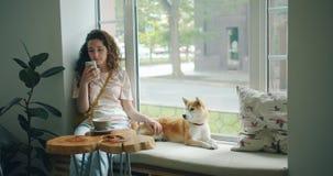 Muchacha bonita que usa el smartphone que frota ligeramente el perro lindo que se sienta en travesaño de la ventana en café almacen de metraje de vídeo