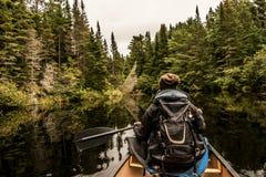 Muchacha canoeing con la canoa en el lago de dos ríos en el parque nacional del algonquin en Ontario Canadá en día nublado Fotos de archivo libres de regalías