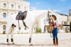 Muchacha cariñosa del vaquero que cuida que besa su caballo que compite con blanco imagen de archivo libre de regalías