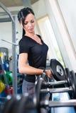 Muchacha caucásica con pesas de gimnasia en un gimnasio Foto de archivo