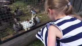 Muchacha cerca de conejos en al aire libre almacen de metraje de vídeo