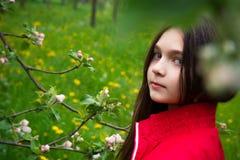 Muchacha cerca del manzano Imagen de archivo libre de regalías