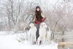 Muchacha con dos galgos en el invierno, nieve que cae Fotografía de archivo
