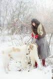 Muchacha con dos galgos en invierno, nieve que cae Imágenes de archivo libres de regalías