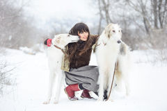 Muchacha con dos galgos en invierno, nieve que cae Fotografía de archivo